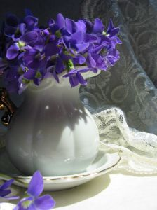 778143_violets_and_lace