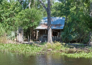 1392022_swamp_hut