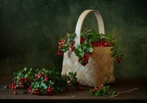 berries in a bag